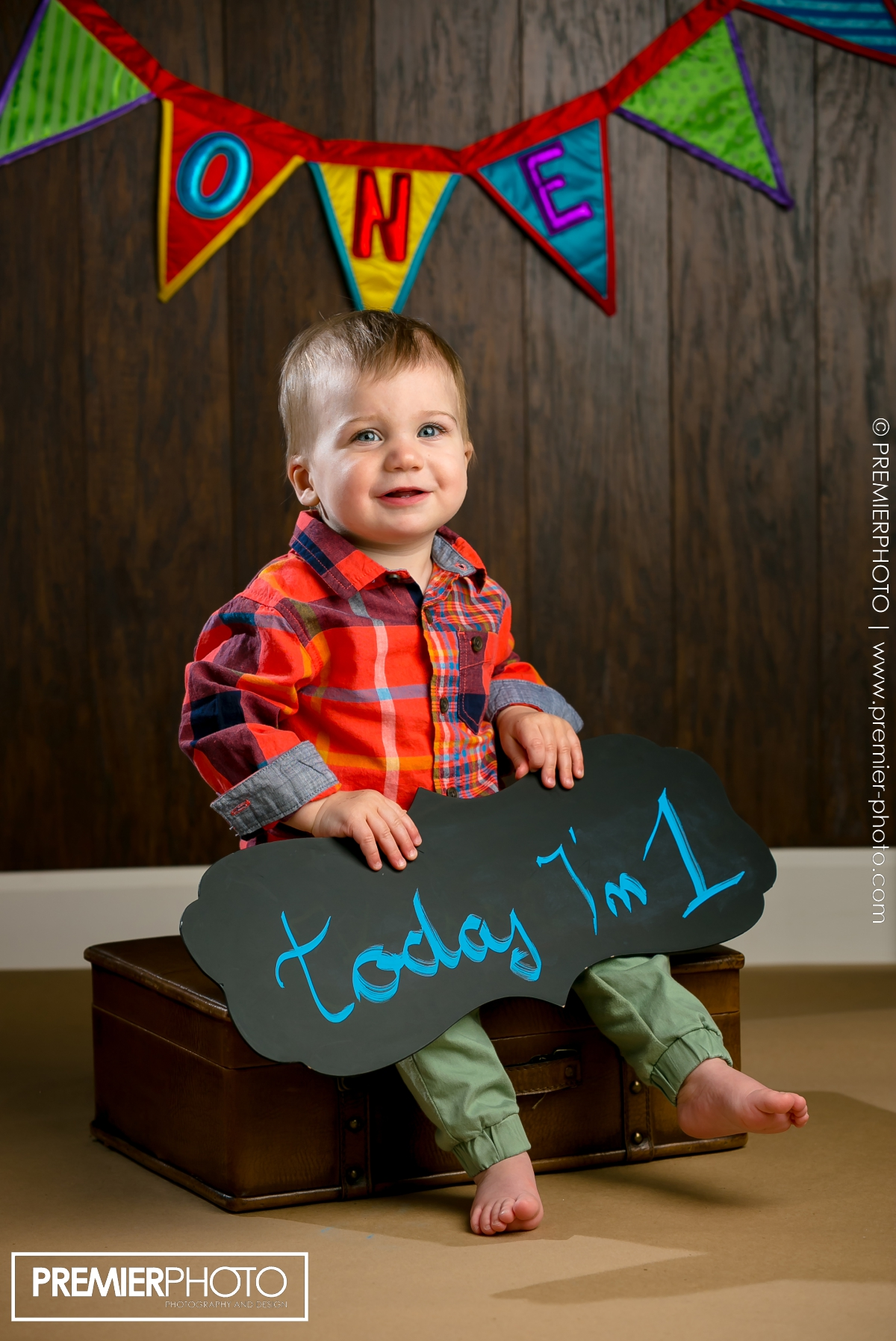 One year old boy birthday photographs